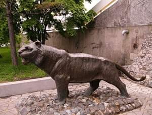 Фото - Владивосток